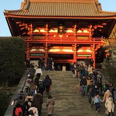 神社/寺/観光/鎌倉/旅 久しぶりに鎌倉をブラブラしてみました。長…(5枚目)
