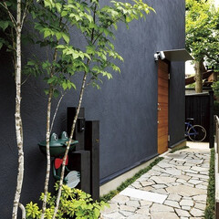 自然素材/無垢材/無垢杉の床/漆喰の壁/白い壁/黒い外壁/... . ~黒い外壁のファサードに  植栽のグ…