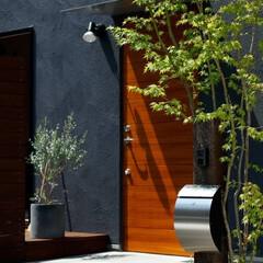 玄関/入口/ポスト/スタイリッシュ/グリーン/植物/... 家をおしゃれに住みこなそう。 そう、着こ…