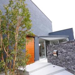 自然素材/無垢材/無垢杉の床/漆喰の壁/W断熱の家/土間のある家/... 東京都東村山市の工務店 《土間のあるおし…