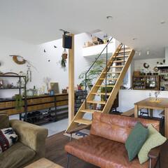 自然素材/無垢材/無垢杉の床/漆喰の壁/白い壁/W断熱の家/... . ~おしゃれな家具や雑貨と  豊富なグ…