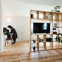 無垢材/白い壁/観葉植物/収納ラック/テレビ/雑貨/... . ~両側から利用できる  スケルトン収…