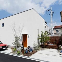 自然素材/無垢材/無垢杉の床/漆喰の壁/白い壁/W断熱の家/... . ~真っ白な四角のハコの家は  広い庭…
