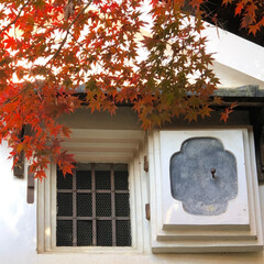 スマホでパ写リ/京都詩仙堂/ブラ〜とお出かけ 明日大阪で用事があって京都に行ってきまし…(2枚目)