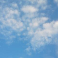 くも/青空 おはようございます☀ 早々にお墓参りへ …