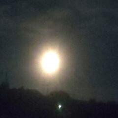 月夜 月が綺麗!🌙.*·̩͙