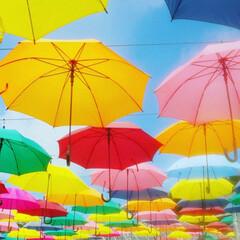 かさ/青空 青空の下の傘☂☂☂☂☂ なんか…