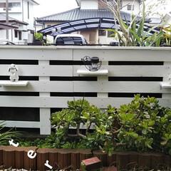 小さい庭/簡単/暮らし/DIY 皆さんのお庭をみて、いいなぁと 思う毎日…