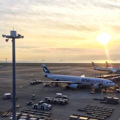 セントレア/空港/秋/風景/おでかけ 昨日のセントレア空港✈️ 友達と空港でラ…