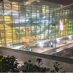 出迎え/夜景/空港/おでかけ/建築 中部国際空港 深夜のお出迎え( ̄▽ ̄;)…