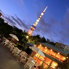 空/夕暮れの空/黄昏時/芝公園/東京タワー/フォロー大歓迎/... グッと寒くなってきましたね🙌 寒いのが苦…