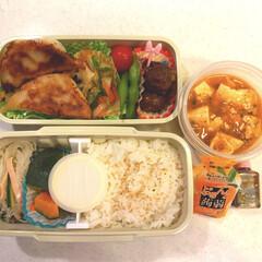 麻婆豆腐/かぼちゃ🎃/春雨サラダ/シャーローワンズ/野菜炒め/焼き餃子🥟/... おはようございます☀  今日は昨日と違う…