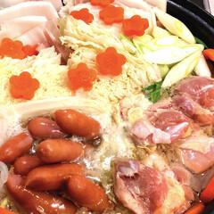 あたたまる鍋/鍋/あけおめ/フォロー大歓迎/冬/おうち/... 今日は、すごく寒い😵 白菜多めの鍋にしま…(1枚目)