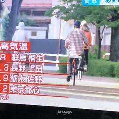 全国最高温度/暑い💦 こんばんは 暑いですね💦 ニュースでこち…