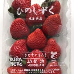 リミとも部/ゆるく投稿/フォロー大歓迎/熊本県産/ひのしずく/いちご🍓大好き 今年もたくさんいちごを食べたい😋 親子で…