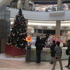 甘い/レインボー綿菓子/スイーツ/グルメ/フード/クリスマス 某ショッピングモールでレインボー綿菓子発…