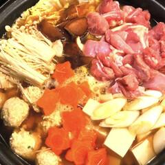 手作りとり肉団子/あたたまります/簡単/ティファール鍋/寒い日/フォロー大歓迎/... おはようございます😃 昨日は、雨で寒かっ…