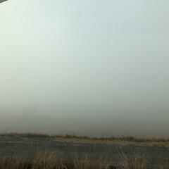 景色/通勤路/運転/霧/フォロー大歓迎/リミとも部 今朝は霧が酷くて前も横もよく見えませんで…(1枚目)