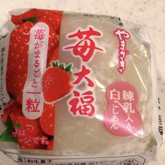 白こしあん/練乳入り/苺大福/ヤマザキ/グルメ/フード/... いちご🍓大福💕 練乳入り あまあま😋