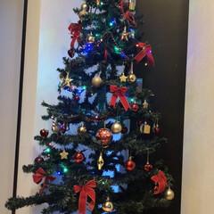 玄関インテリア/カラフル/フォロー大歓迎/リミとも部/クリスマス/クリスマスツリー🎄/... 今日の群馬はからっ風〜🍁落ち葉🍂半端ない…
