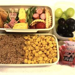 ぷるんと蒟蒻ゼリーパウチ イチゴ+温州みかん 12個(ダイエットお菓子)を使ったクチコミ「おはようございます😄 今日は中学校体育祭…」