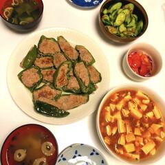 肉汁ジューシーピーマンの肉詰め/トマト🍅ムラサキオニオンピクルス/梅おかかきゅうり🥒/フリーズドライ味噌汁/麻婆豆腐/味梅/... (^_^)/おはようございます  昨日の…