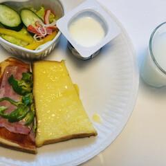 カルピスメロン味/ダノンヨーグルト/サラダ🥗/プリン🍮トースト/ピザトースト/令和元年フォト投稿キャンペーン/... おはようございます( ³ω³  ).。o…