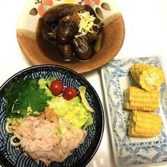 レンチン/豚しゃぶうどん/ナスの煮びたし🍆/とうもろこし🌽/おうちごはん/簡単/... おはようございます(*^ω^*)  昨日…