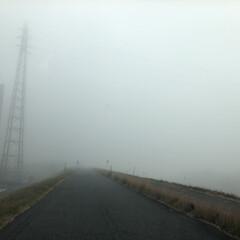 景色/通勤路/運転/霧/フォロー大歓迎/リミとも部 今朝は霧が酷くて前も横もよく見えませんで…(2枚目)