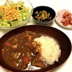 ウインナー/なす柚子胡椒漬け🍆/サラダ🥗/なす🍆/ピーマン/夏野菜カレー🍛/... こんばんは😄 最近食べたかった夏野菜カレ…