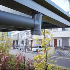 バルコニー屋根/エクステリア/屋根/お手入れ/カーポート/エクスショップ カーポートやテラス屋根は車や洗濯物を雨か…