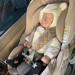 ベビーシート/ねんね/赤ちゃん/おでかけ お出かけ➰🎶🎶  車が好きで動くとすぐに…