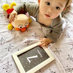 生後7ヶ月/男の子/赤ちゃん またまたすっかりご無沙汰💦💦  先月、7…(2枚目)