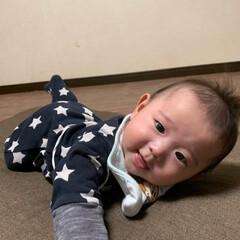 腹バイ/赤ちゃん/ペット 初めての腹バイ❤️ 初めてのカート❤️ …