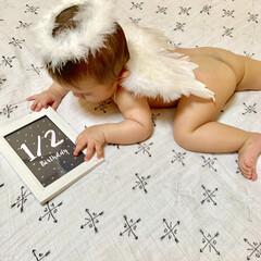 天使/蒙古斑/赤ちゃん/ハーフバースデー/2分の1/生後6ヶ月/... 6ヶ月フォトは天使ちゃん❤️❤️  写真…