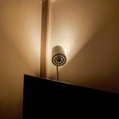 フロアランプ/照明器具/オシャレ/ルームライト/ニトリ テレビの後ろに置いてるのはニトリのフロア…(1枚目)