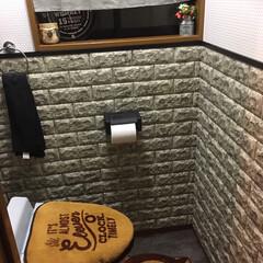 ほぼ100均 ほぼほぼ、100均です‼️ 寂しいトイレ…