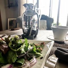 サラダ/前菜/おもてなしランチ/おもてなし料理/おもてなし/グルメ/... おもてなしが続くこの頃 簡単なお料理でも…