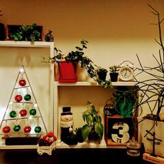靴箱の上/玄関/リメイク/クリスマス/クリスマスツリー/DIY/... 旦那が 箱ふたつ作ってくれたので。 (……