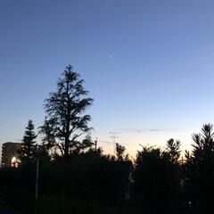景色/夕日/2018夏/散歩道/今日1日 こんな綺麗な夏の夕暮れ❤︎