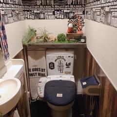 ハロウィン/うさまる/突っ張り棒/タンクレス/トイレ/DIY/... 小さい大好きなうさまるがどこかにいます!