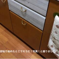 リメイクシート/キッチン/DIY (3枚目)