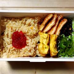 お弁当記録/地味弁/彼氏弁当 今日のお弁当はこんな感じ。 キノコと鮭の…