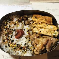 糖質制限/お弁当 マヨぽんチキン弁当。お米は初めて白滝と炊…