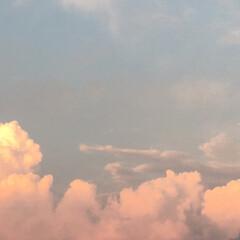 夏空/温泉/令和の一枚/おでかけ/旅行/風景/... 暑ぅ〜い一日でしたぁ☀️  コスモスの湯…(2枚目)