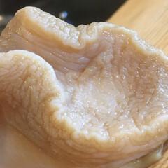 和食/二川/豊橋/よし味/二川宿/キッチン 北海道産 特大 真つぶ貝🐚✨  旨味、甘…