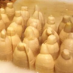 おせち料理/よし味/二川/豊橋/冬/グルメ/... おせち に入れる   筍の煮物 毎年亀さ…
