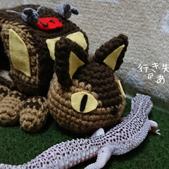 かぎ針編み/爬虫類のいる暮らし/レオパードゲッコー/ヒョウモントカゲモドキ/ハンドメイド お久しぶりです😄 早いもので12月…コロ…(4枚目)