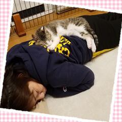 保護猫/LIMIAペット同好会/ペット/ペット仲間募集/犬/わんこ同好会/... 晩御飯のあと娘が撮った1枚。 眠る私の背…