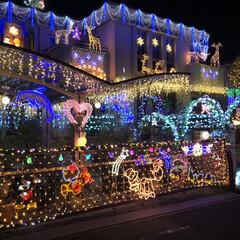 八王子/イルミネーション/クリスマス/光る/照明 イルミネーション🎄 見つけた途端に「わぁ…(2枚目)